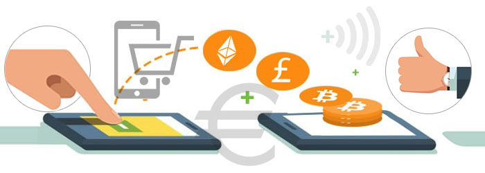 Online purchase using the digital currency
