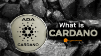 What is cardano ?